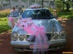 Обслуживание свадеб, деловых поездок
