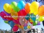 Воздушные шары на 1 сентября в школу Киев, шарики с гелием на первый звонок.